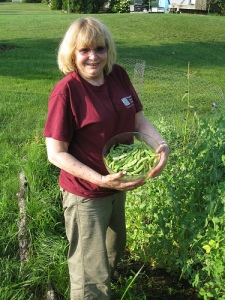 Garden peas 2009